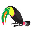 jungle toucan icon cartoon style vector image vector image