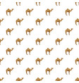 camel pattern vector image vector image