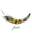 colorful feather isolated on white background vector image vector image