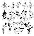 doodle plants collection on white background vector image vector image