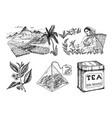herbal tea bag brewing cooking directions plants vector image