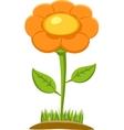 Of Flower vector image