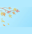 autumn sale background with tree branch vector image