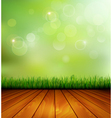 Background with wood and grass vector image