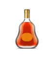 bottle cognac with clear label or dark brandy vector image