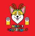 corgi in costume christmas deer on red vector image vector image
