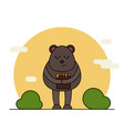 cute bear with honey in cartoon style vector image