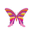 fantastic butterfly hawaiin tropical insect vector image
