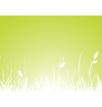 Grass Meadow vector image vector image