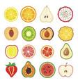 halves fruit set sweet healthy segment vector image