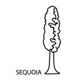 sequoia icon outline style vector image vector image