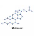 Cholic acid cholesterol vector image vector image