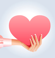 female hand holding pink heart vector image vector image