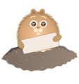 little groundhog with sign vector image vector image