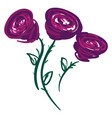 three purple roses or color vector image
