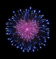 beautiful heart-firework bright romantic firework vector image vector image