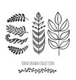 ethnic collection with stylized doodle leaves vector image vector image