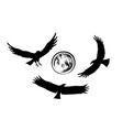 flying eagle silhouettes vector image vector image