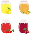 Jam jars lemons oranges currants and cherries vector image