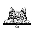 peeking cat - cheerful kitty out - face vector image vector image
