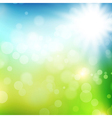 summer or spring background vector image vector image