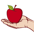 apple in hand vector image vector image