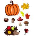 autumn design elements vector image vector image