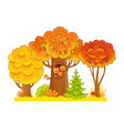 autumn trees stand on a white background with a vector image