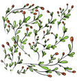 collection of hand drawn wild flowers on vector image