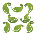 green leaves signs and symbols collection vector image vector image