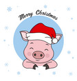 pig with hat santa claus vector image vector image