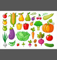 set with vegetables vector image