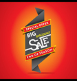 big discount sale end of season sale banner desig vector image