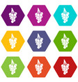 grapes icon set color hexahedron vector image vector image