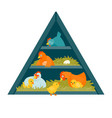 henhouse triangle vector image vector image