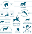 Horse label set vector image vector image