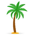 palm tree and accessories for rest stock vector image vector image