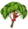 Red snake in a tree vector image vector image