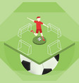 soccer player kick the ball on the sport field vector image