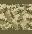 Camouflage pattern background seamless
