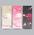 cherry blossom realistic sakura japan vector image vector image