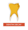dentin decay isolated dental care and medicine vector image vector image