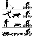 Dogs and cyclist vector image vector image