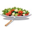fresh greek salad vector image vector image