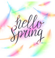 hello spring bright bird feathers on a white vector image vector image