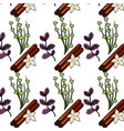 herbs and spices plants and organ food back vector image vector image