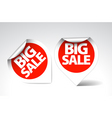 round labels stickers for big sale vector image vector image