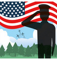 soldier of usa design vector image