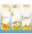 abstract floral autumn sale vertical banners vector image