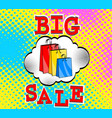 big sale bags packages pop art retro comic style vector image